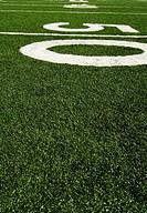 Fifty yard line