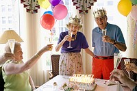 Toasting Elderly Couple on Anniversary