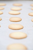 Cookie wafers from a professional bakery, Spokane, Washington