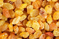 Golden yellow raisins background