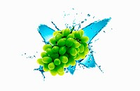 The grapes with white background