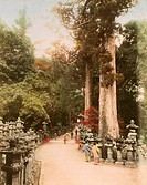 geography / travel, Japan, Nara, temples, stone lantern alley at the Shinto shrine Kasuga_taisha, photo, coloured, late 19th century,