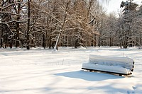 Empty bench in winter