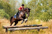 Girl on jumping horse