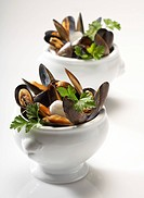 Mussels with coriander and onions