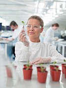 Scientist examining plants in lab