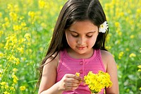 Young girl plucking flowers