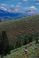 Mountain Biking in Greenhorn Gulch