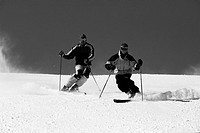 Downhill Skiers