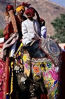 Men Riding Decorated Elephants During Holi