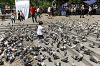 Child plays with pigeons Barcelona Spain Europe Catalonia