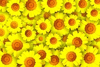 Repeated pattern with yellow flowers