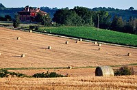 Crespellano (Bologna, Italy): field with bales