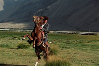 Kirgiz Man on Rearing Horse