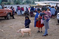 Family with Pig on Leash at Otavalo Market