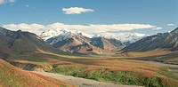 Autumn tundra colors a mountain valley at Denali National Park.