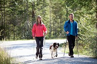 Germany, Bavaria, Couple having nordic walk with english springer spaniel
