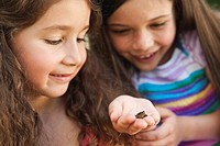 Germany, Bavaria, Sisters looking at little frog, close up