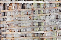 Ruined wall with wooden lattice _ background