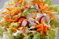 Fresh carrot, lettuce and radish salad food photos
