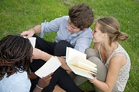 Teenagers reading in grass at park