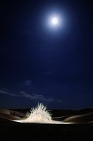 Africa, Tunisia, nr  Ksar Rhilane  Artistic illumination at full moon of a bush in the Sahara desert By Harald Woeste