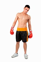 Young boxer against a white background
