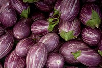 New Jersey grown purple eggplants