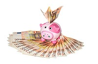 funny pink piggy bank money box on fifty euro banknotes