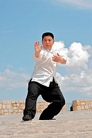 Fu Qing Quan, Master and authentic descendant of Yang Tai Chi Family, 7th Dan of China Wushu and chinese national tai chi champion in 1988
