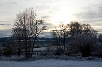 Winter landscape with snow in the morning