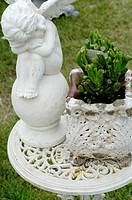 Putto and plant in garden