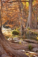 Frio River in Fall