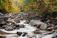 Zealand River in the White Mountains, New Hampshire USA during the autumn months  This area was once part of the Zealand Valley Railroad, which was a ...