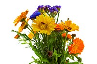 Bouquet of Yellow Orange Blue Flowers