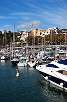 Mooring Sailboats at the Yachting Marina of Funchal, Madeira, Portugal, Europe