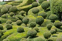 The overhanging gardens of Marqueyssac