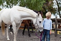 Boy walking white horse in yard