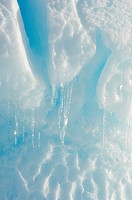 Antarctica, Snow Hill Island. Close_up of icicle on iceberg.