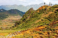 Rice Terraces, and country Taphin , Sapa