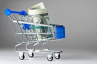 dollar notes in shopping cart