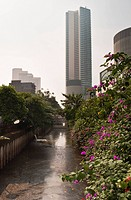 Jakarta Canal