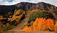 Autumn color in the San Juan Mountains of Colorado