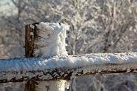 Frozen snow on wooden fencing