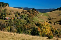 The autumnal colours of rural countryside at village Zazriva part Koncita in Orava region, Slovakia