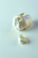 Garlic bulb with clove of garlic _ allii sativi bulbus _ appertains to the kind of the lily plants _ It contains ethereal oils vitamin A B1 C and nico...