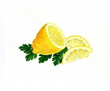 Half lemon _ lemon panes and parsley _ lemon _ Citrus limon