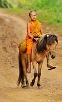 Novice and the horse on relaxation time, Wat Tam Pa Ar-Cha Thong, Maechan, Chiangrai, North of Thailand