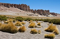 Chile. Atacama desert. Flamingos national reserve. The Cathedrals in the Tara salar