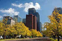 Japan-Tokyo City-Marunouchi Financial District Skyline